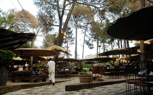 Moyo Zoo Lake. Photo courtesy of the restaurant.