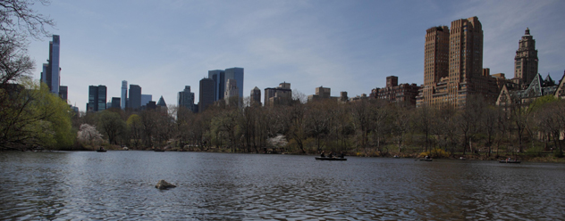 The New York skyline from Central Park