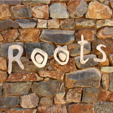 Roots at Forum Homini