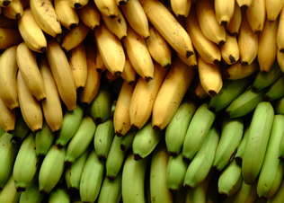 Why bananas are the worst