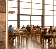 Durbanville Hills Restaurant