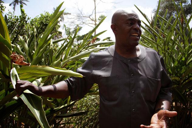 Abdalla introduces us to  cardamom in fresh form