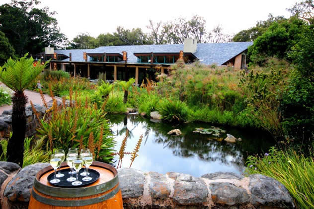 Moyo Kirstenbosch. Photo courtesy of the restaurant.