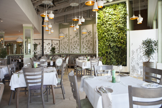 The leafy interiors at Cafe del Sol Botanico