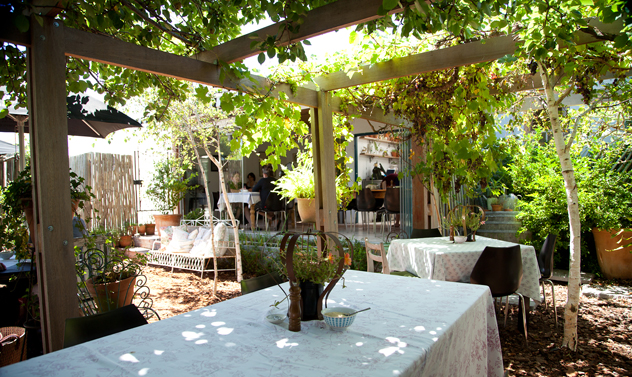 The garden at Starlings. Photo courtesy of the restaurant.
