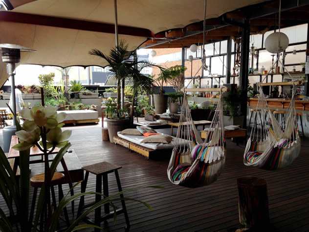 Review the green walls are alive at living room in for Living room maboneng