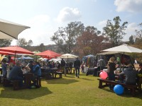 Beer Garden and Food Market