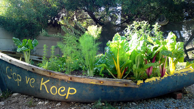 The boat garden at Oep ve Koep. Photo courtesy of the restaurant.