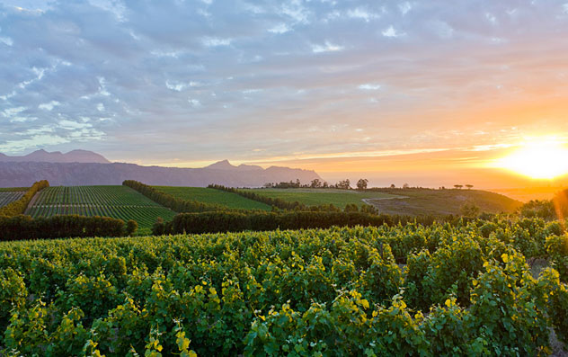 The Waterkloof wine estate. Photo courtesy of the restaurant.