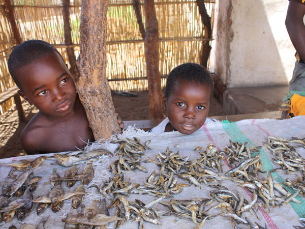 Dried fish sold by local kids