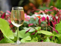 A Tropical White Wine served at The World Blind Tasting Challenge