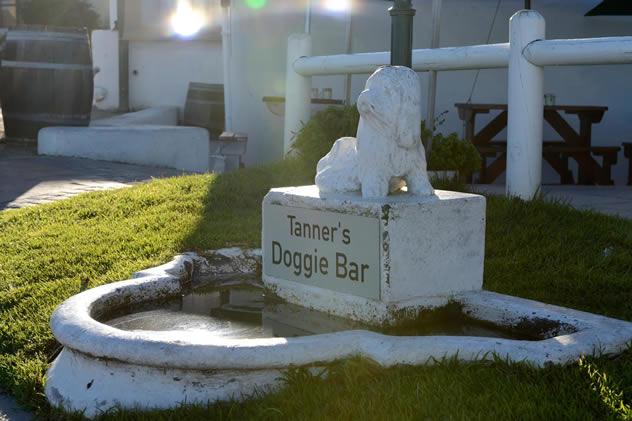 ons-huisie-doggie_bar