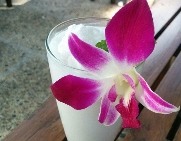 Frozen coconut milk (with obligatory  decorative orchid).