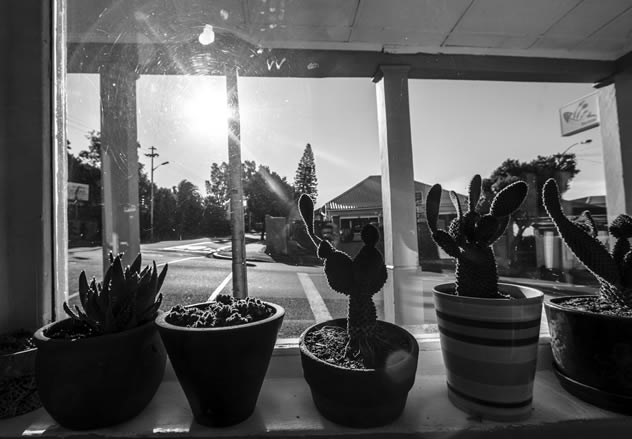 A view through the window at Pesce Azzuro. Photo courtesy of the restaurant.