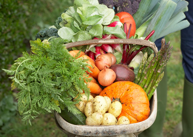 The 2016 Good Food & Wine Show's line-up will showcase urban farming and gardens, take a look at food markets, and track the move towards more sustainable lifestyles. Photo: Thinkstock.
