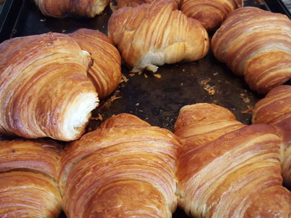 Buttery croissants waiting to be eaten at Ou Meul Bakkery. Photo by Nikita Buxton.