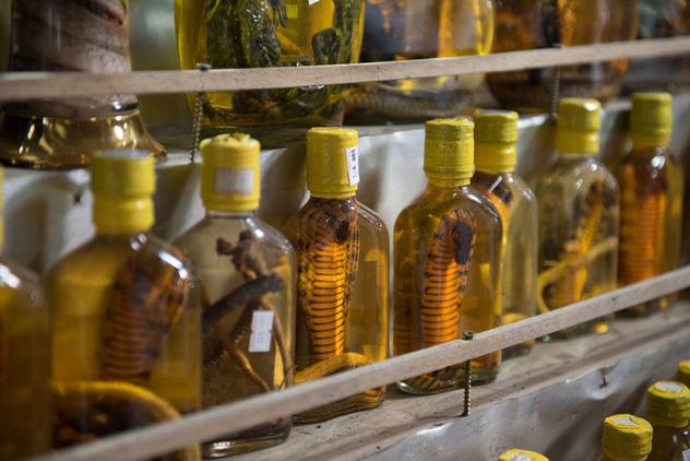 Bottles of snake wine. Photo: ThinkStock.