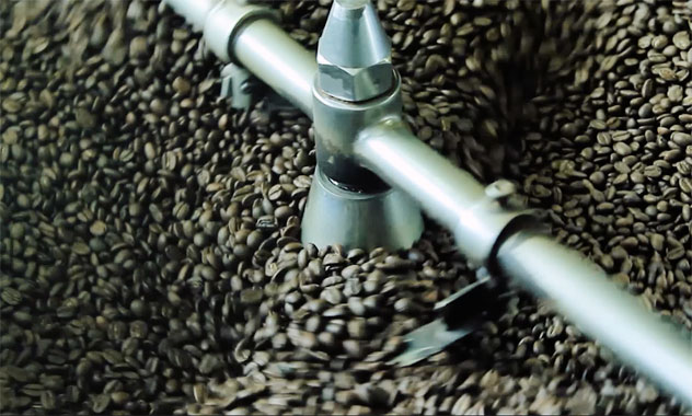 Beans fresh from the roaster at Terbodore.