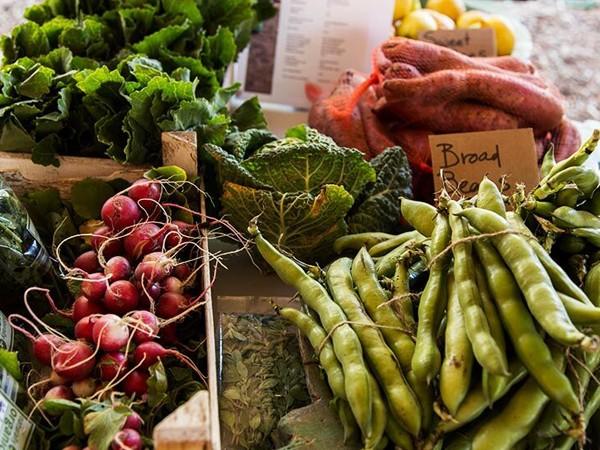 Fresh veggies at the Oranjezicht City Farm Market. Photo supplied.