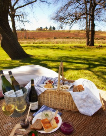 A picturesque picnic at Hartenberg. Photo supplied.