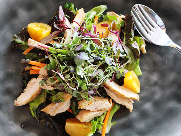 Bistro Michel's sesame oil grilled chicken breast on a bed of fresh salad leaves. Photo supplied.