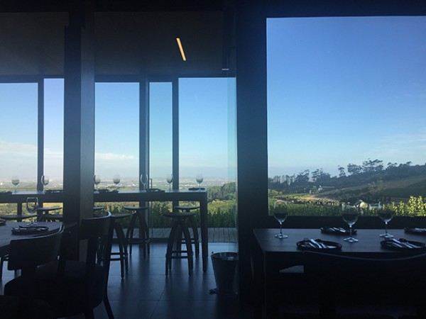 Floor-to-ceiling windows make the most of the view over the Constantia wine valley. Photo by Amy Ebedes.