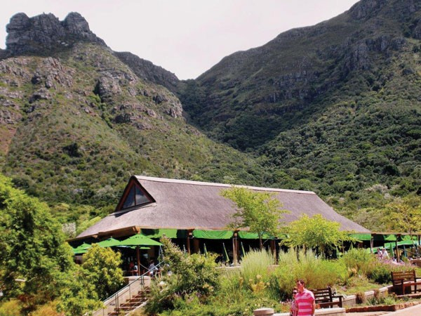 Kirstenbosch Tea Room offers delicious picnic baskets