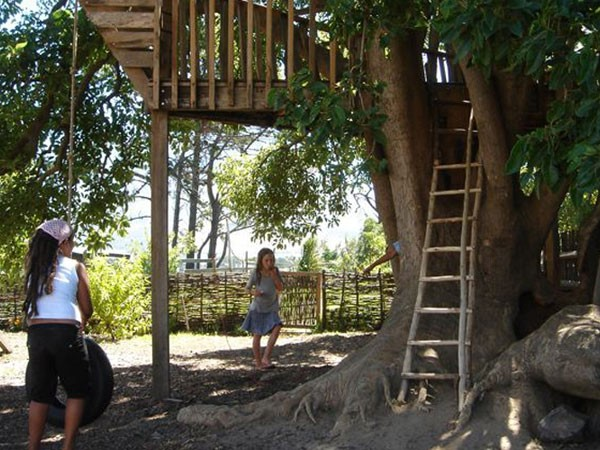 The tree house at Millstone Café. Photo supplied.