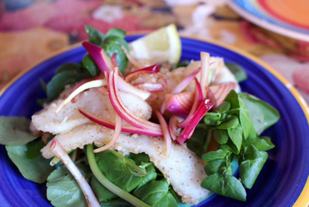 Expect fresh, made-from-scratch dishes with organic, seasonal and as locally sourced ingredients. Photo supplied.