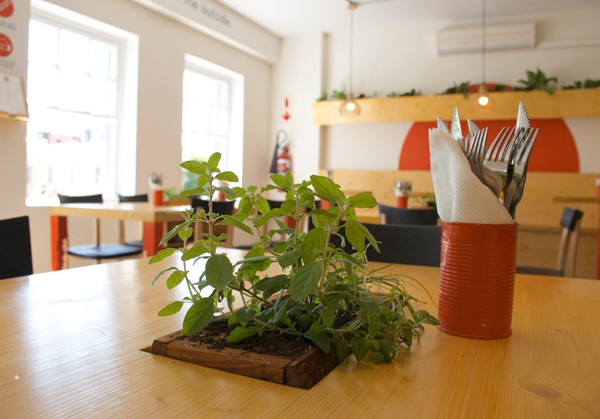 The herbs at IYO restaurant are watered using grey water. Photo supplied.