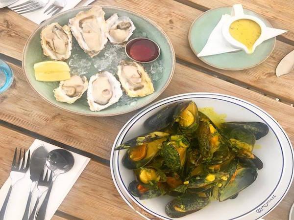 SeaBreeze Fish & Shell