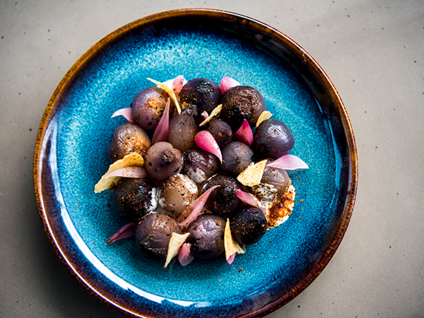 A former Noma chef brings travelling pop-up to South Africa