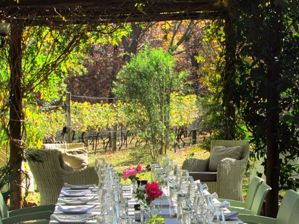 The setting next to the vineyard at Abingdon Wine Estate. Photo supplied.