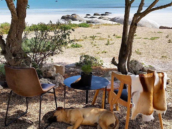 Review: A West Coast adventure for foodies at Wolfgat in Paternoster