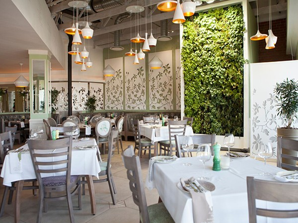 The interior at Cafe del Sol Botanico