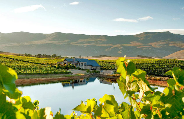 The wine farm is situated in the beautiful Hemel en Aarde Valley. Photo supplied.