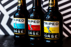 Striped Horse