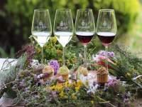Delheim cupcake and wine pairing - featured image