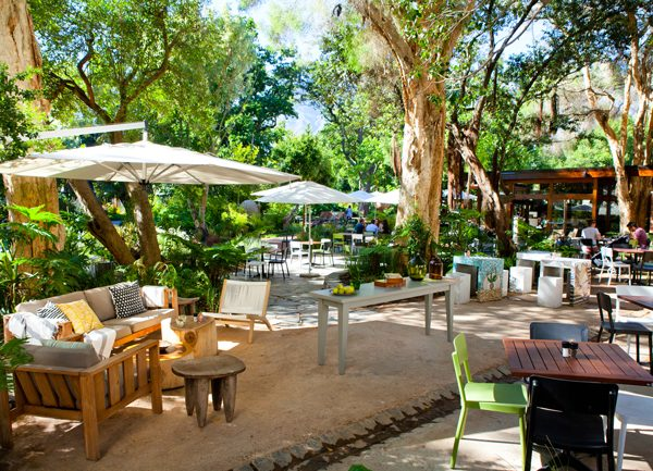 5 Great Restaurants With Magnificent Gardens In Cape Town