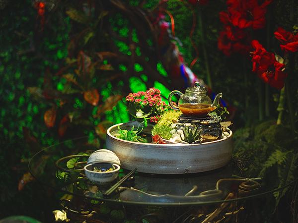La Colombe enchanted garden_Claire Gunn