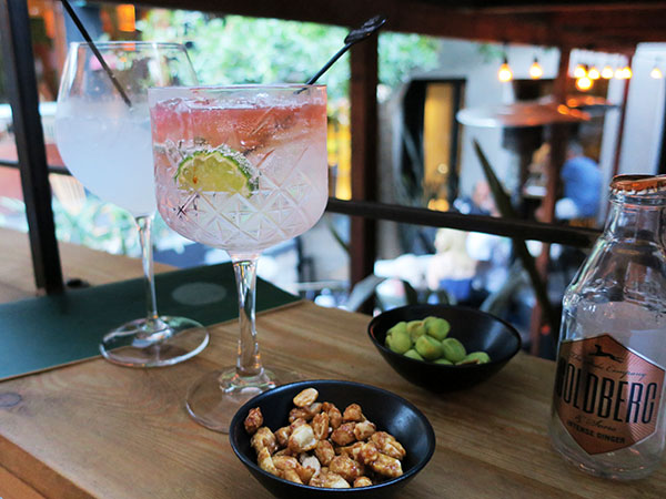 A hidden gin bar and succulent steak: We review southern suburbs gem, Patina
