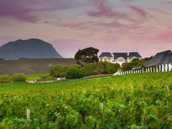 Partner content: What makes the Hemel-en-Aarde Valley's Bouchard Finlayson Wines exceptional
