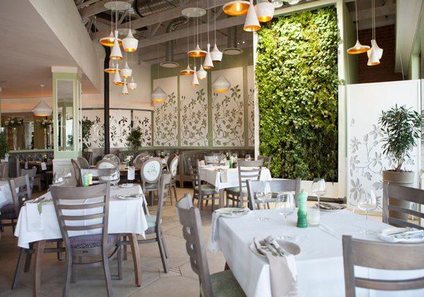 The interior of Cafe Del Sol Botanico