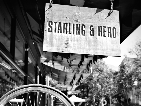 Starling and Hero Bicycle Café