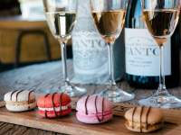 MCC and macaron pairing at Canto