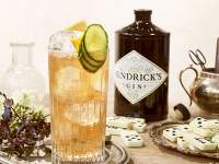 Hendrick's Gin Buck Cocktail
