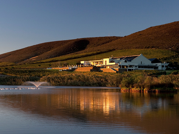 Enjoy the beautiful view at De Grendel Wine Estate and Restaurant this Valentine's Day.