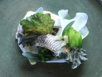Kobus van der Merwe Wolfgat fish dish