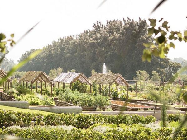 The Werf at Boschendal Food Garden
