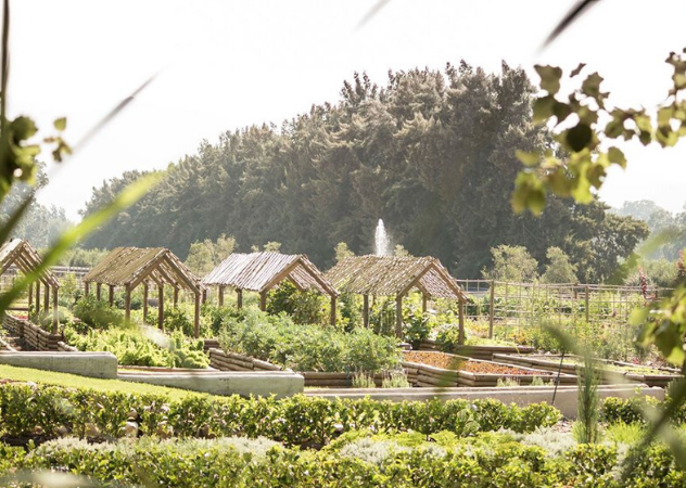 The Werf at Boschendal Food Garden